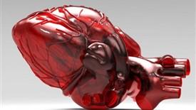 ساخت قلب مصنوعی به کمک تکنولوژی پرینت سه بعدی