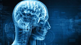 مغز ما حتی پس از مرگ نیز کار می کند ولی چگونه؟